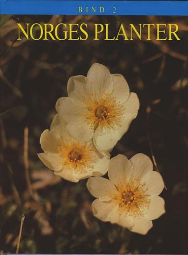 Norges planter 2.