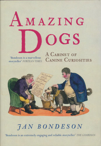Amazing dogs. A cabinet of canine curiosities.