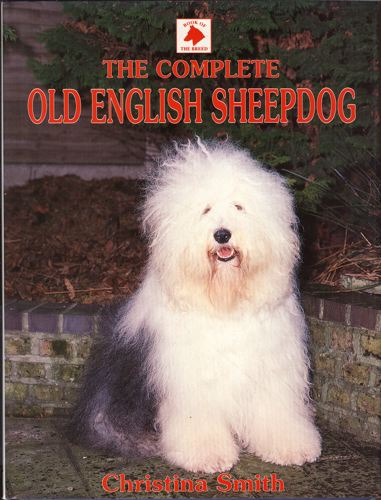 The complete Old English Sheepdog.