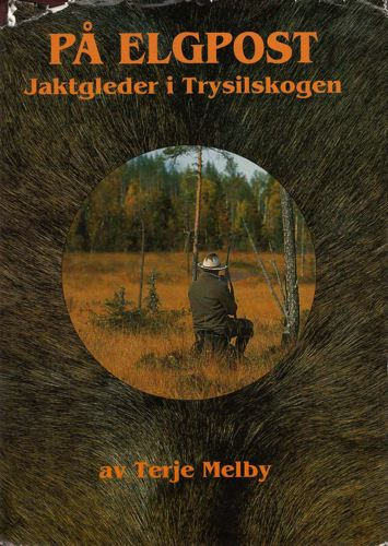 På elgpost. Jaktgleder i Trysilskogen.