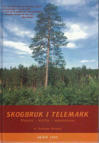 Skogen i Telemark.