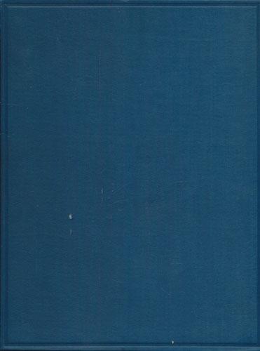 Nordenfjelske ristninger og malinger av den arktiske gruppe. Mit deutschem Resumé.